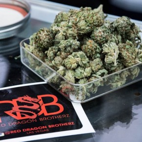 Congress Moves to Strangle FEDS' Anti-Weed Crusades
