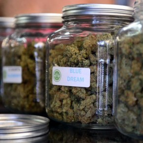 Ohio Marijuana Legalization 2015: Voters Reject Recreational, Medical Cannabis Initiative